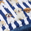 KOCYK LIGHT PIANO PUPPIES navy 80x70